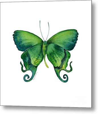 29 Arcas Butterfly Metal Print by Amy Kirkpatrick