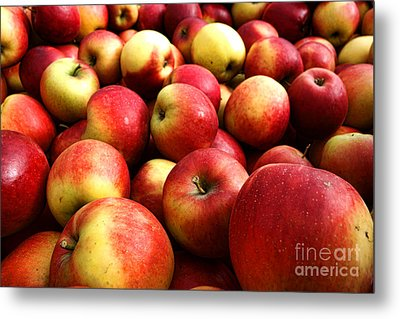 Apples Metal Print by Olivier Le Queinec
