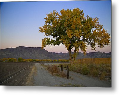 Autumn Moonset Metal Print by Jim Snyder