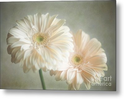Metal Print featuring the photograph Blooming by Aiolos Greek Collections