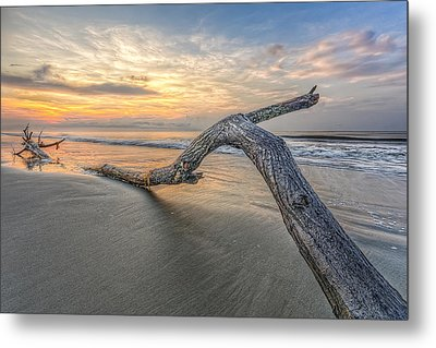 Bough In Ocean Metal Print by Peter Lakomy