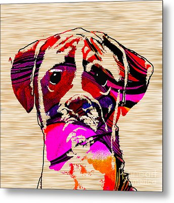 Boxer Metal Print by Marvin Blaine