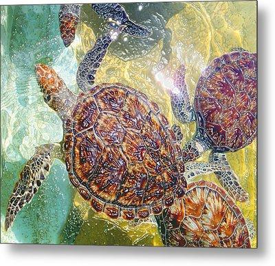 Cayman Turtles Metal Print by Carey Chen