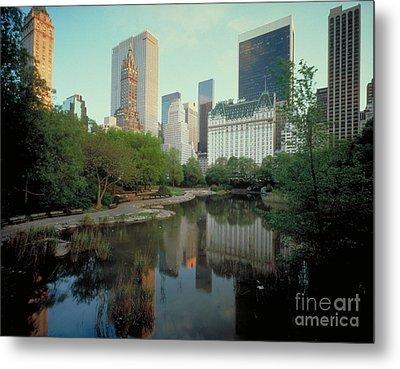 Central Park Metal Print by Rafael Macia