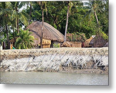 Coastal Flood Defences In The Sunderbans Metal Print by Ashley Cooper