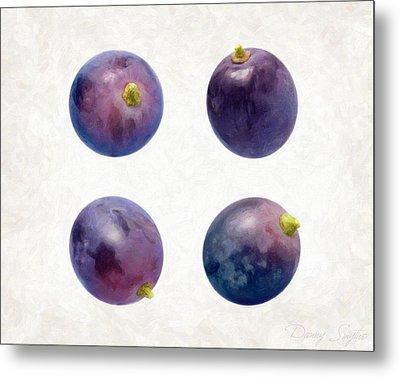 Concord Grapes Metal Print by Danny Smythe