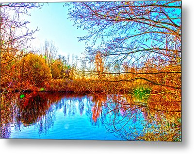 Countryside Metal Print by Pravine Chester