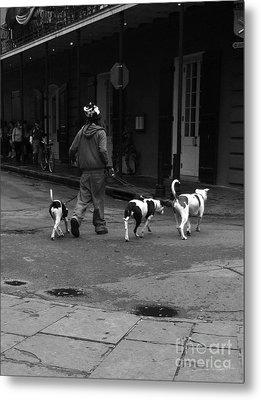 3 Dog Day Metal Print by WaLdEmAr BoRrErO