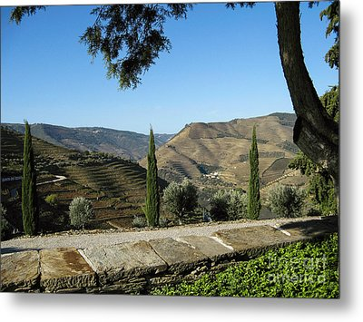 Metal Print featuring the photograph Douro River Valley by Arlene Carmel