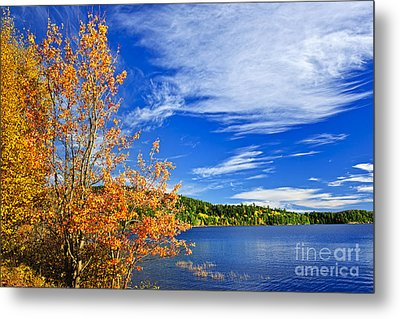 Fall Forest And Lake Metal Print by Elena Elisseeva