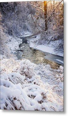 Forest Creek After Winter Storm Metal Print