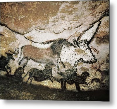 France. Montignac. The Cave Of Lascaux Metal Print