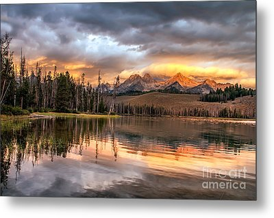 Golden Sunrise Metal Print by Robert Bales