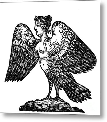 Harpy, Legendary Creature Metal Print by Photo Researchers