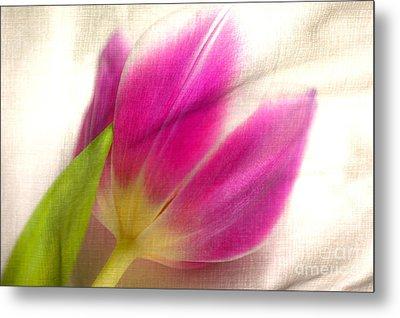 Linen Tulip Metal Print by Bobbi Feasel