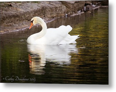 My Prince Metal Print by Cathy Donohoue