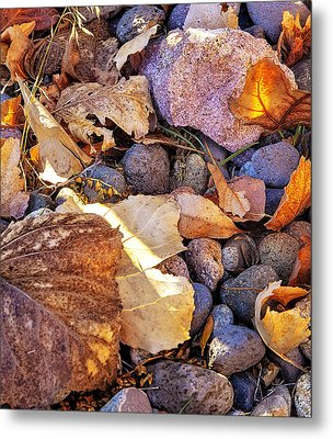 Metal Print featuring the photograph Odds 'n Ends by Nancy Marie Ricketts