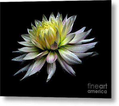 Perfection Metal Print by Irina Hays