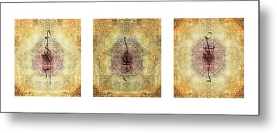 Prayer Flag Triptych  Metal Print by Carol Leigh