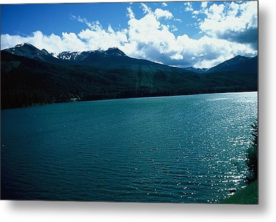 River And Mountains Metal Print by Dick Willis
