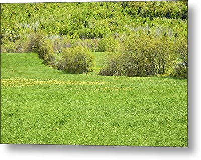 Spring Farm Landscape In Maine Metal Print