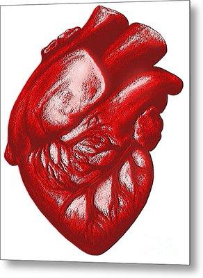 The Human Heart Metal Print by Dennis Potokar