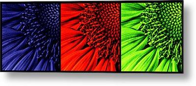 3 Tile Sunflower Colors Metal Print by Mark Kiver