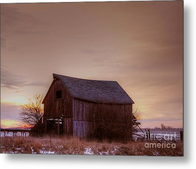 Timeless Metal Print by Thomas Danilovich