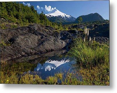 Villarrica National Park, Chile Metal Print