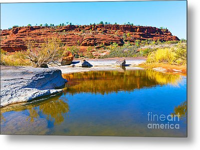 Palm Valley Central Australia  Metal Print by Bill  Robinson
