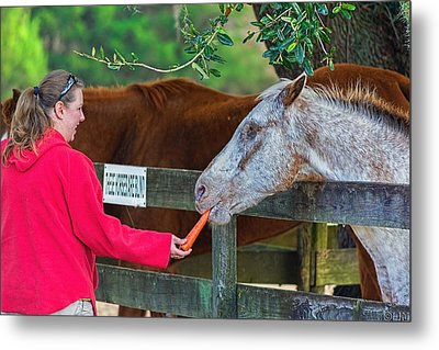 Metal Print featuring the photograph 3490-200 by Lewis Mann