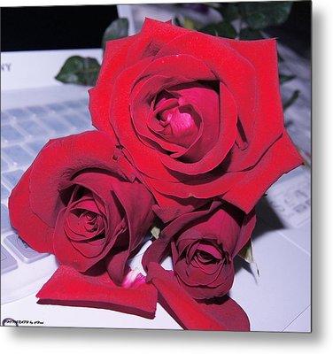 Roses For You  Metal Print by Gornganogphatchara Kalapun