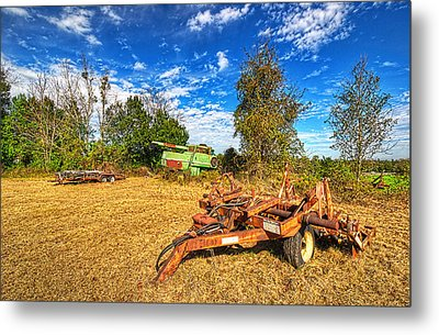 Metal Print featuring the photograph 3631-7-201 by Lewis Mann