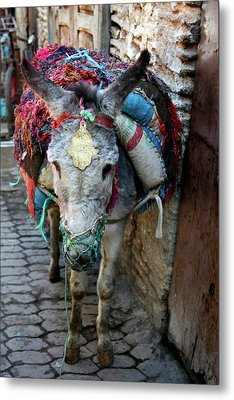 Africa, Morocco, Fes Metal Print by Kymri Wilt