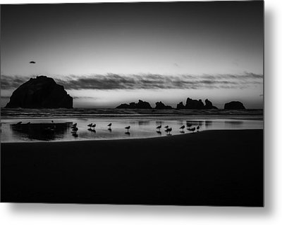 Bandon State Park Metal Print by Jean-Jacques Thebault