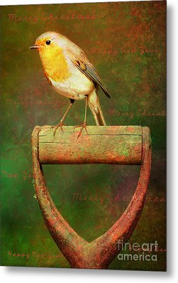 Christmas Robins Metal Print
