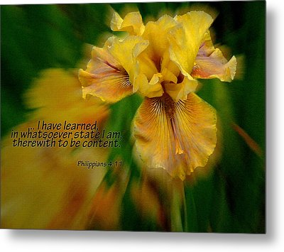 Contentment Metal Print by Larry Bishop