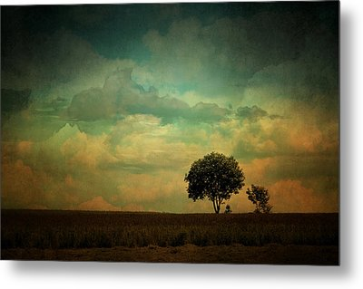Country Life Metal Print by Heike Hultsch