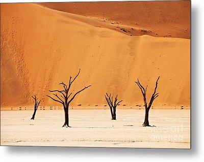 Dead Vlei In Namib Desert Metal Print by Juergen Ritterbach