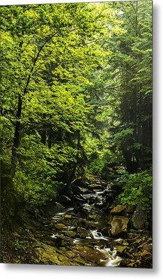 Metal Print featuring the photograph Mountain Stream by Jaroslaw Grudzinski