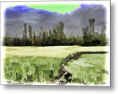 Mustard Fields In Kashmir Metal Print