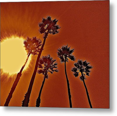 4 Palms N Sun Metal Print