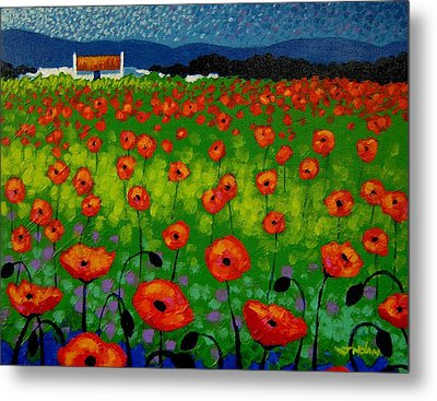 Poppy Field Metal Print by John  Nolan