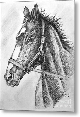 Metal Print featuring the drawing Rachel Alexandra by Patrice Torrillo