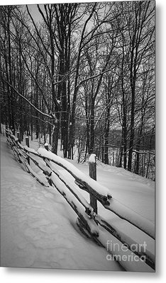 Rural Winter Scene With Fence Metal Print by Elena Elisseeva