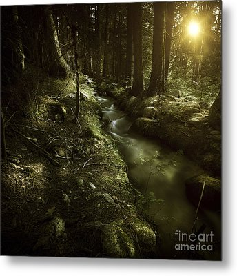 Small Stream In A Forest At Sunset Metal Print by Evgeny Kuklev