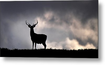 Stag Silhouette Metal Print