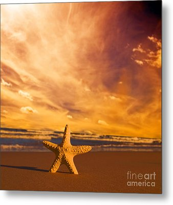 Starfish On The Beach At Sunset Metal Print by Michal Bednarek