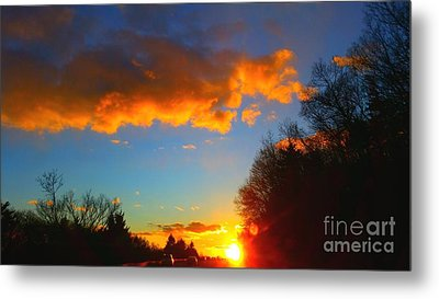 Sunset Metal Print by Rose Wang
