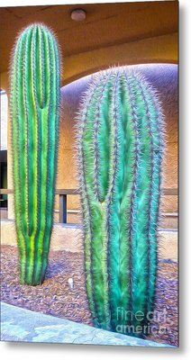 Tucson Arizona Cactus Metal Print by Gregory Dyer